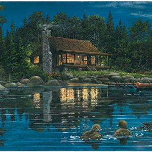 Reflections on Loon Landing