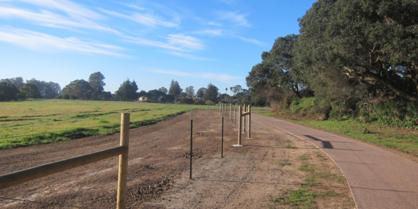Coming to Terms with the New Arana Gulch