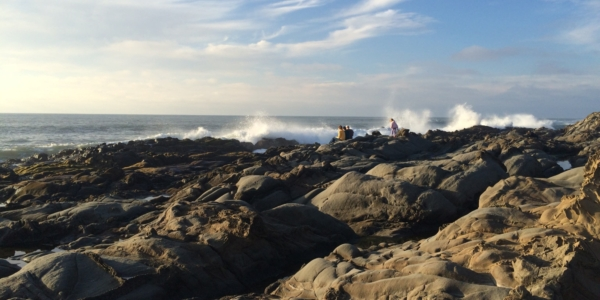 Collecting Ancient Rocks in Bloomers at Pescadero's Pebble Beach