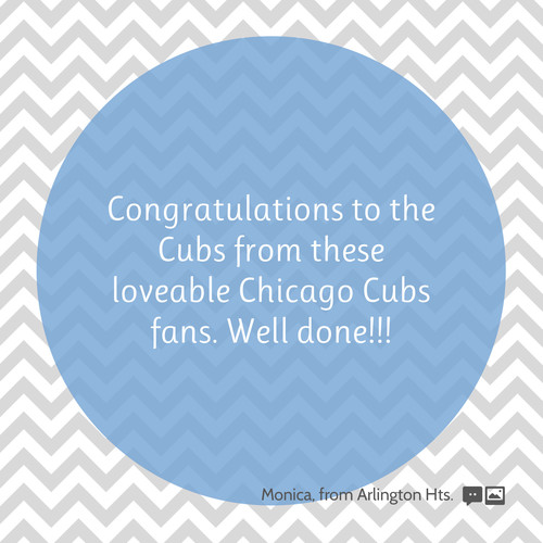 Chicago Cubs  2016 World Series Champions 8b514a35dd1