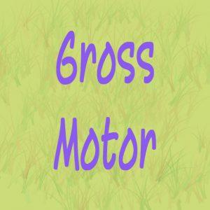 Gross Motor