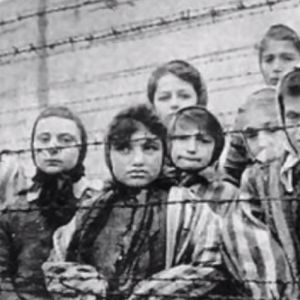Learn about the Holocaust.