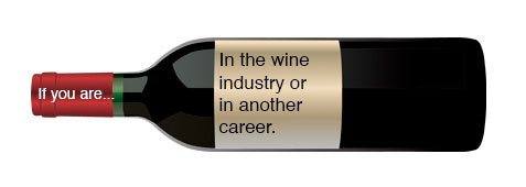 Wine Industry or Other Career