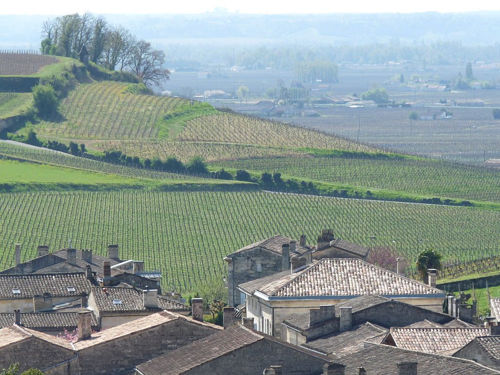 St_Emilion Vineyards