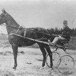 Horse and Carriage. Year: 1900s