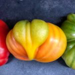 The Heart of an Heirloom Tomato by Patti Stone