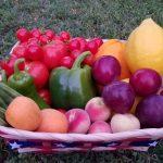Garden Harvest by Amy Dillon