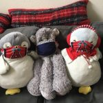 Safety First for Stuffed Animals by Christine Cunliffe