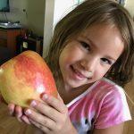 Largest Apple Anna by Layla Romero