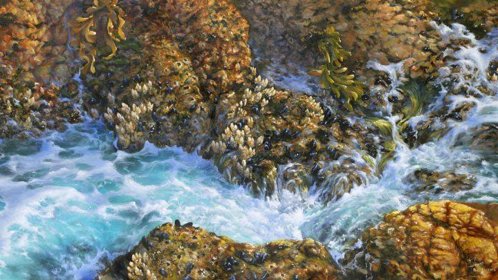 tidal water painting orange rocks creatures aqua water sea foam