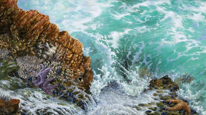painting aqua sea foam tide water rocks life creatures ocean artist seascape
