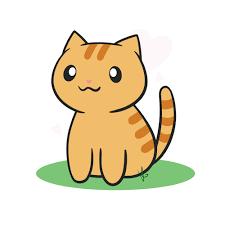 Queso Cat