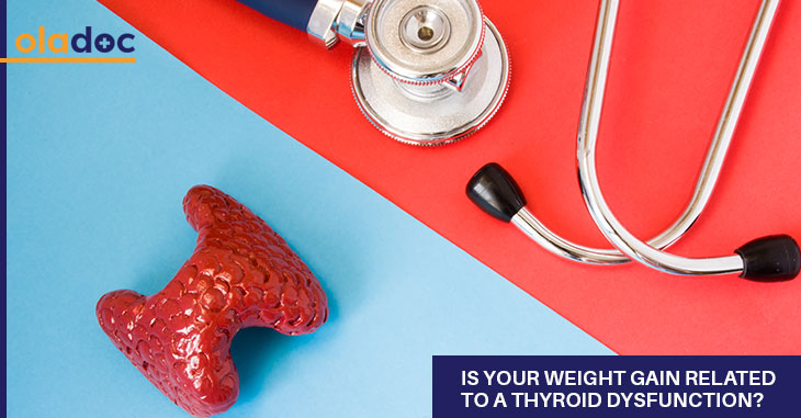 Is Your Weight Gain Related To A Thyroid Dysfunction?