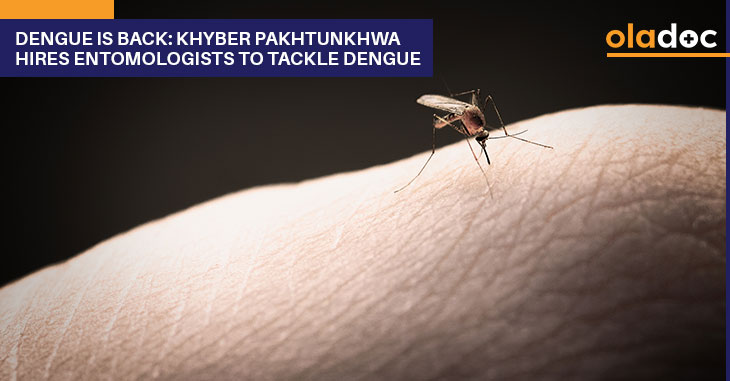 Dengue Is Back: Khyber Pakhtunkhwa Hires Entomologists To Tackle Dengue