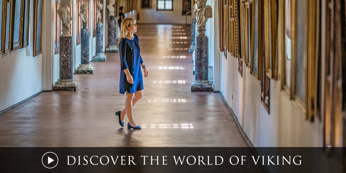 Discover the World of Viking