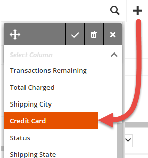 Display the credit card column