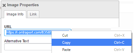 Copy image path