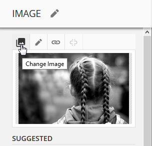 change image icon in ONTRAmail editor