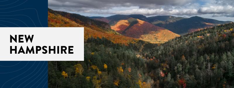 New Hampshire NP