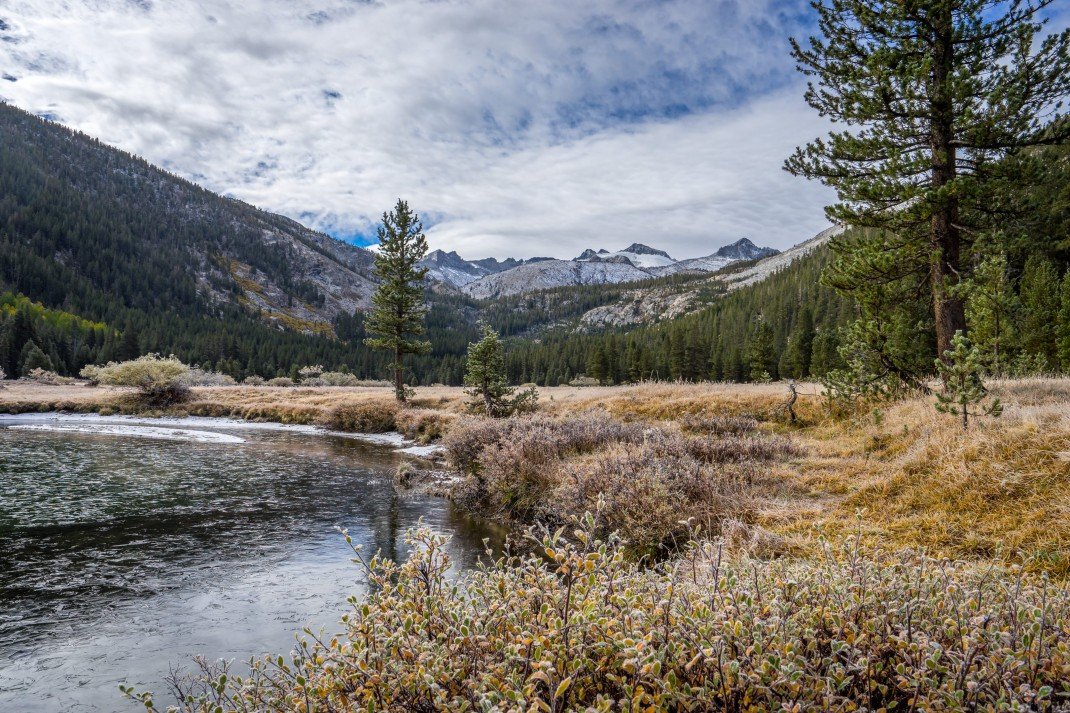 Lyell Canyon | John Muir Trail Honeymoon
