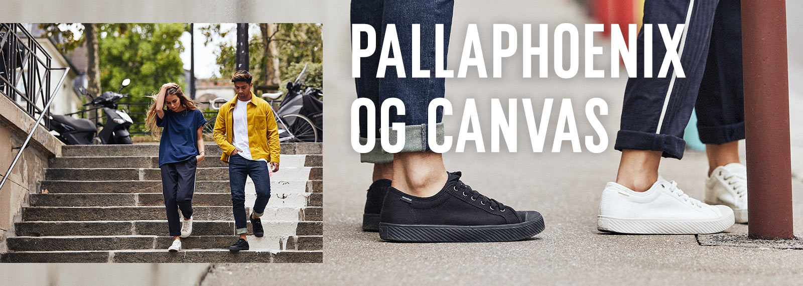 PALLAPHOENIX OG CANVAS