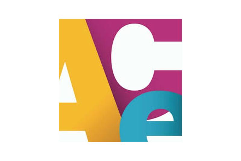 The ACE Mentor Program