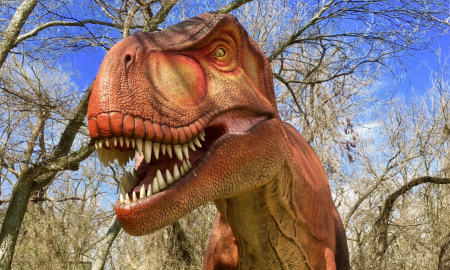 T-Rex at Dinosaurs Live! at the Heard Natural Science Museum & Sanctuary, McKinney, Texas