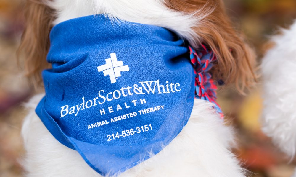 buy popular 99590 5f084 Baylor Scott & White uses the love of animals for healing