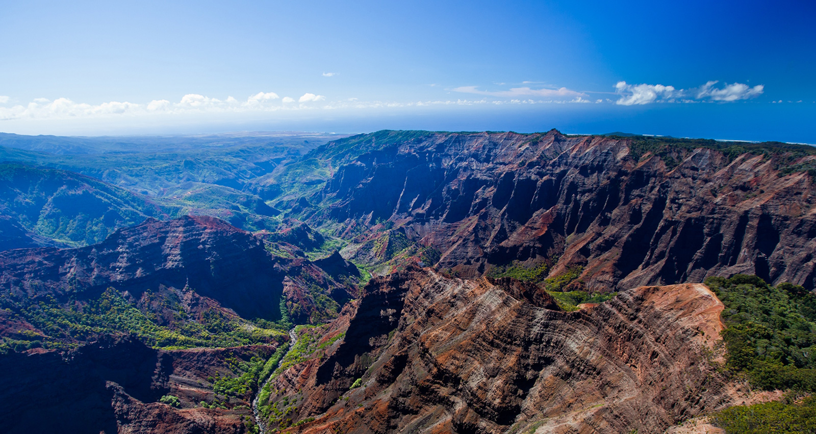 One-Day Kaua'i Waimea Canyon & Fern Grotto Experience