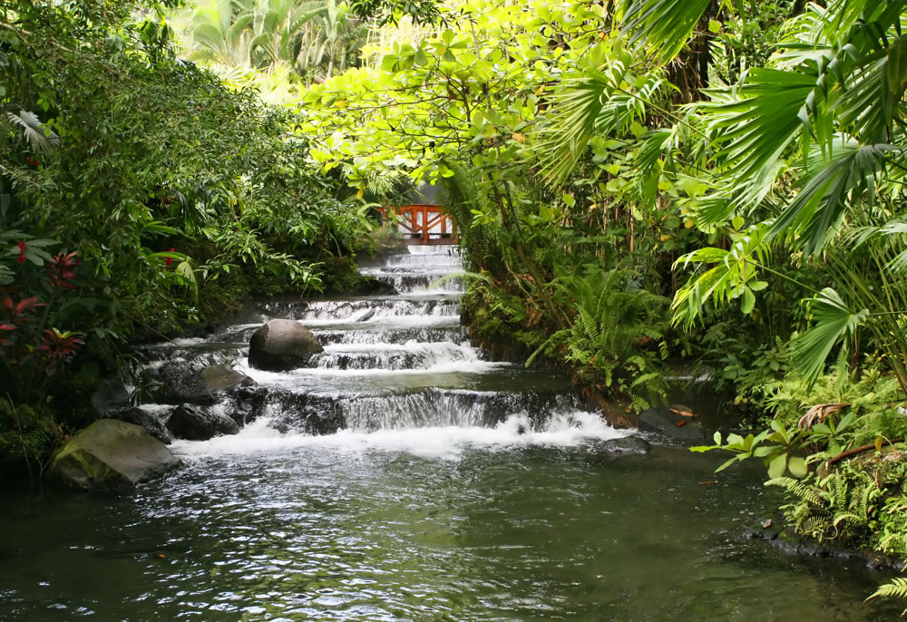 Product Arenal Volcano & the Springs from San Jose