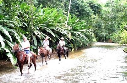 Product Horseback Riding in Puntarenas