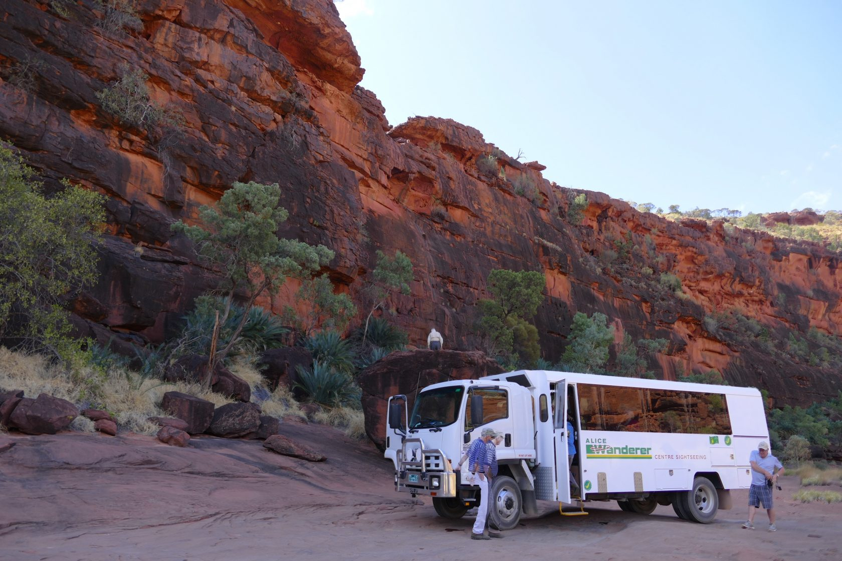Product 4WD Palm Valley Tour Full Day