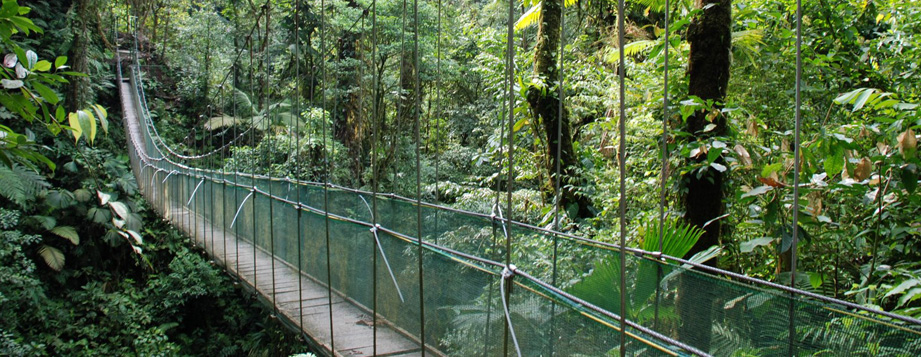 Product Hanging Bridges Adventure