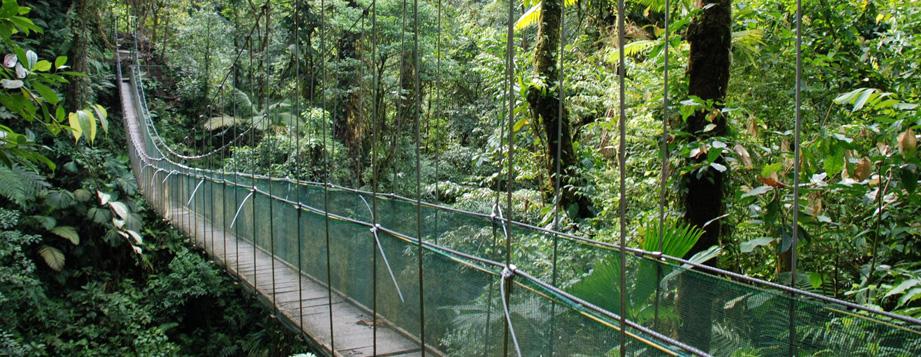 Product Hanging Bridges Adventure