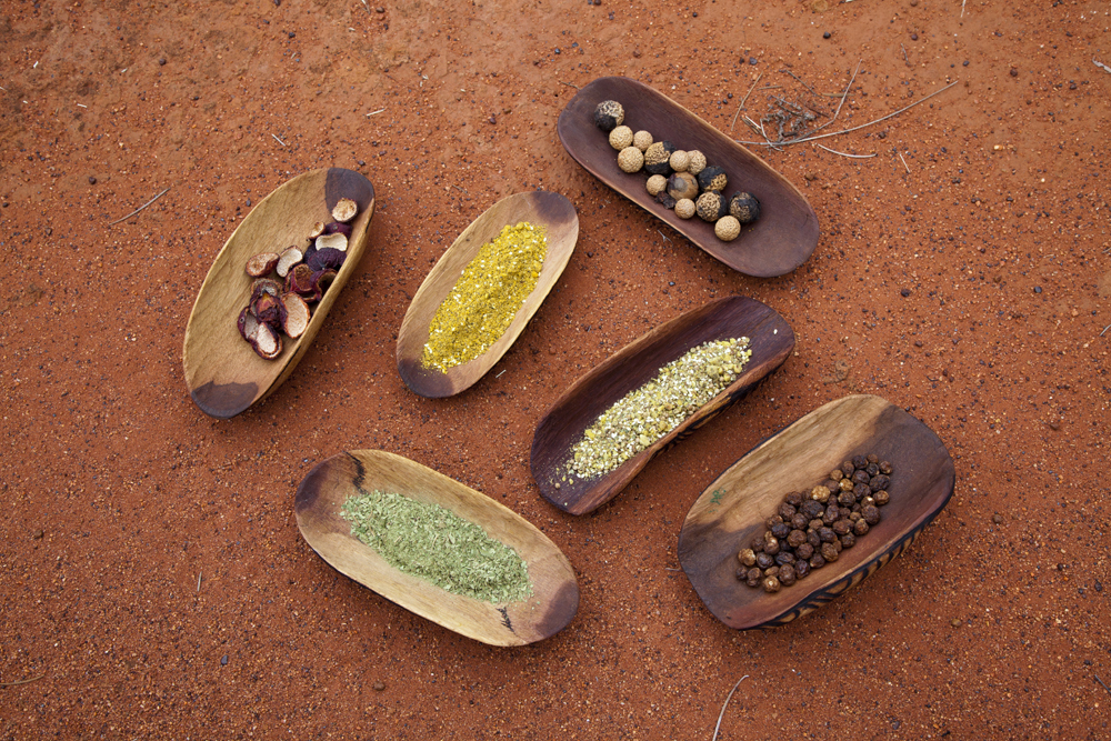 Product Bush Tucker & Reptiles of the Red Centre