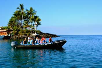 Kona Whale Watch Adventure