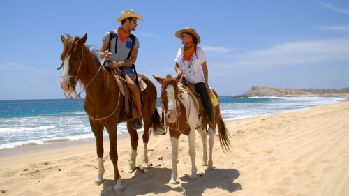 Pacific Beach Horseback with Carisuva