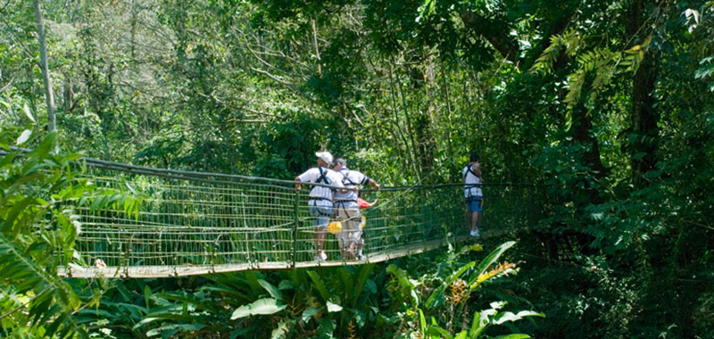 Product Canopy Tour From Jaco