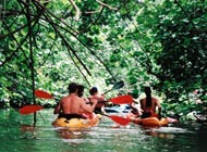 Product Ancient Kayak River Secret Falls Adventure