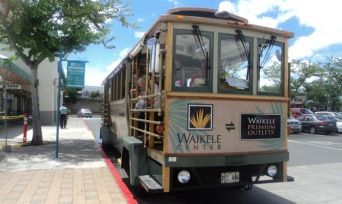 Waikele Shopping Trolley - 110B