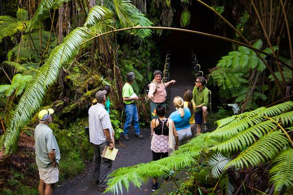 Discover Volcano Country (Hilo)