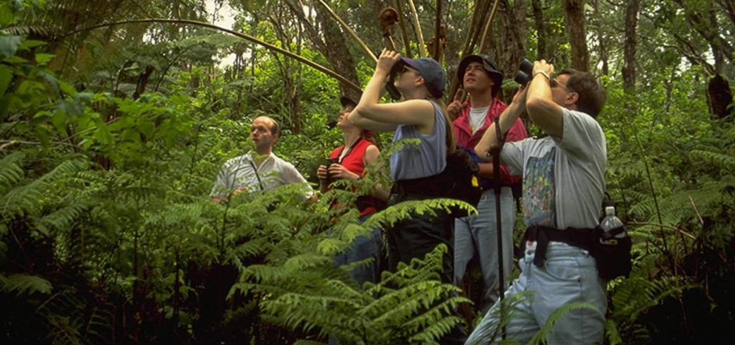 Product Rainforest and Dryforest Adventure