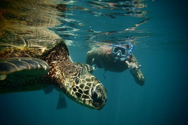 Circle Island Snorkel Tour image 3