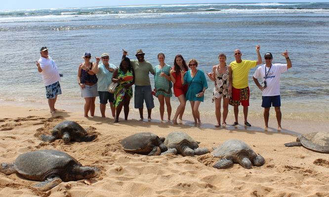 Circle Island Snorkel Tour image 6