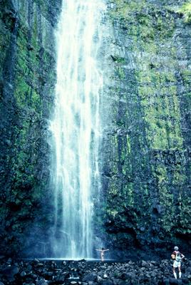 Hana Full Day Waterfall Rainforest Hike