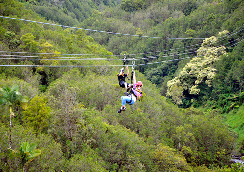Zipline Through Paradise Adventure image 2