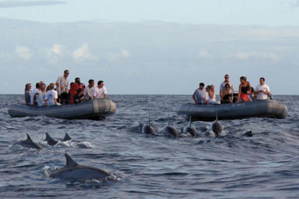 Scenic Kauai Na Pali Raft Tour image 2