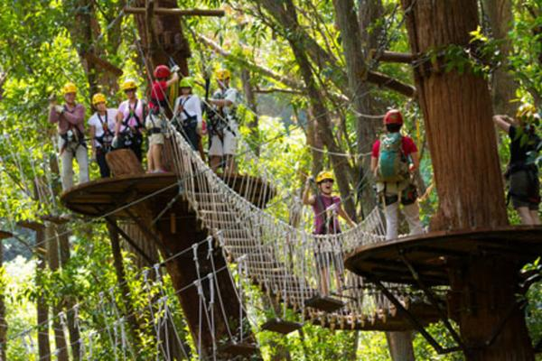 Kohala Canopy Zipline Adventure