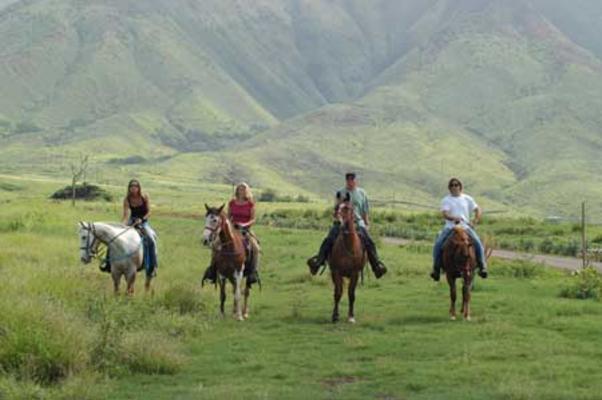 Product West Maui Horseback Ride