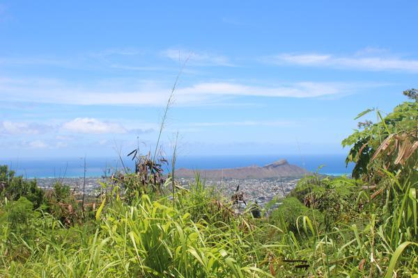 Makiki Valley Moderate Hike
